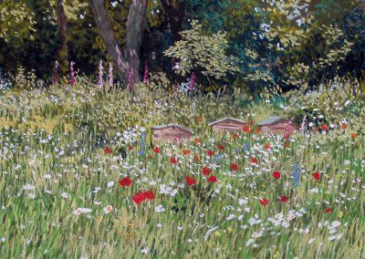 Hidecote Manor Wild Garden
